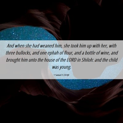 Picture 06 - 1 Samuel 1:24 KJV - And when she had weaned him, she took him up with - Bible Verse Picture