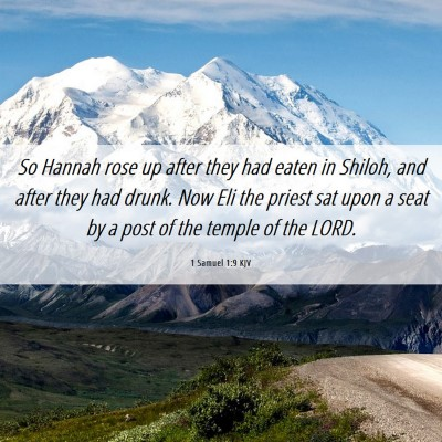 Picture 06 - 1 Samuel 1:9 KJV - So Hannah rose up after they had eaten in Shiloh, - Bible Verse Picture