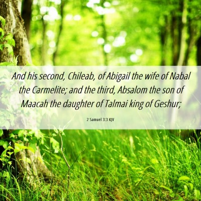 Picture 06 - 2 Samuel 3:3 KJV - And his second, Chileab, of Abigail the wife of - Bible Verse Picture