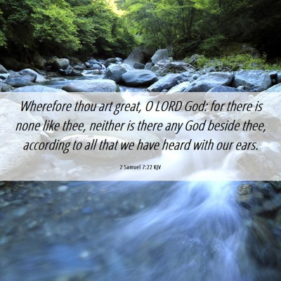 Picture 06 - 2 Samuel 7:22 KJV - Wherefore thou art great, O LORD God: for there - Bible Verse Picture