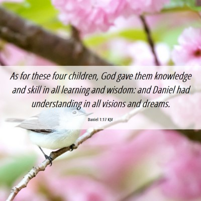 Picture 06 - Daniel 1:17 KJV - As for these four children, God gave them - Bible Verse Picture