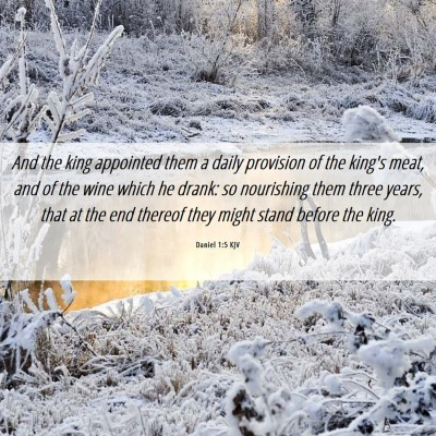 Picture 06 - Daniel 1:5 KJV - And the king appointed them a daily provision of - Bible Verse Picture