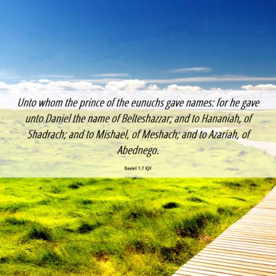 Picture 06 - Daniel 1:7 KJV - Unto whom the prince of the eunuchs gave names: - Bible Verse Picture