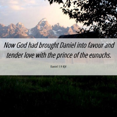 Picture 06 - Daniel 1:9 KJV - Now God had brought Daniel into favour and tender - Bible Verse Picture