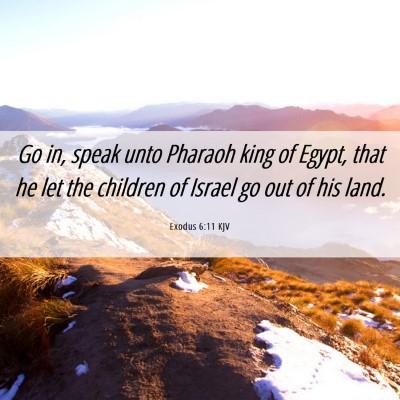 Picture 06 - Exodus 6:11 KJV - Go in, speak unto Pharaoh king of Egypt, that he - Bible Verse Picture