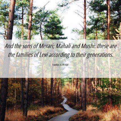 Picture 06 - Exodus 6:19 KJV - And the sons of Merari; Mahali and Mushi: these - Bible Verse Picture