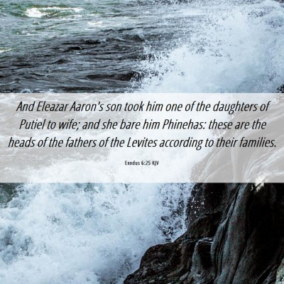 Picture 06 - Exodus 6:25 KJV - And Eleazar Aaron's son took him one of the - Bible Verse Picture