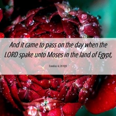 Picture 06 - Exodus 6:28 KJV - And it came to pass on the day when the LORD - Bible Verse Picture