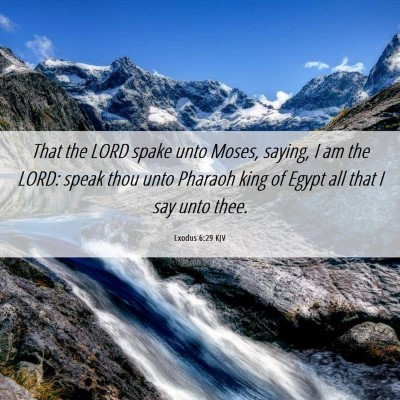 Picture 06 - Exodus 6:29 KJV - That the LORD spake unto Moses, saying, I am the - Bible Verse Picture