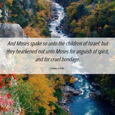 Picture 06 - Exodus 6:9 KJV - And Moses spake so unto the children of Israel: - Bible Verse Picture