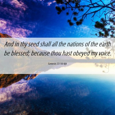 Picture 06 - Genesis 22:18 KJV - And in thy seed shall all the nations of the - Bible Verse Picture