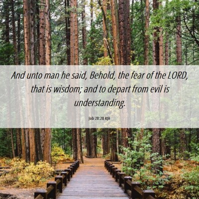 Picture 06 - Job 28:28 KJV - And unto man he said, Behold, the fear of the - Bible Verse Picture