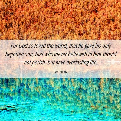 Picture 06 - John 3:16 KJV - For God so loved the world, that he gave his only - Bible Verse Picture
