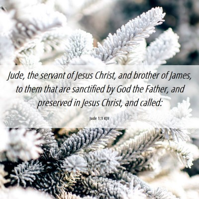 Picture 06 - Jude 1:1 KJV - Jude, the servant of Jesus Christ, and brother of - Bible Verse Picture