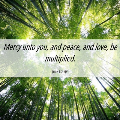 Picture 06 - Jude 1:2 KJV - Mercy unto you, and peace, and love, be - Bible Verse Picture