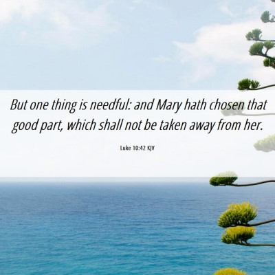 Picture 06 - Luke 10:42 KJV - But one thing is needful: and Mary hath chosen - Bible Verse Picture