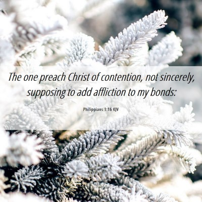 Picture 06 - Philippians 1:16 KJV - The one preach Christ of contention, not - Bible Verse Picture