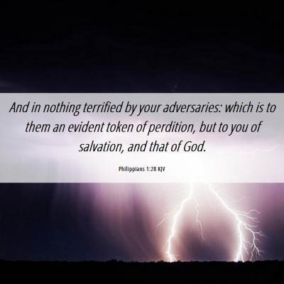 Picture 06 - Philippians 1:28 KJV - And in nothing terrified by your adversaries: - Bible Verse Picture