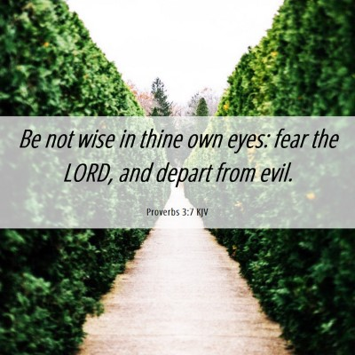 Picture 06 - Proverbs 3:7 KJV - Be not wise in thine own eyes: fear the LORD, and - Bible Verse Picture