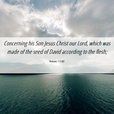 Picture 06 - Romans 1:3 KJV - Concerning his Son Jesus Christ our Lord, which - Bible Verse Picture
