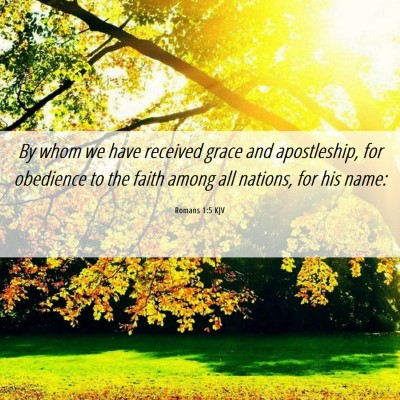 Picture 06 - Romans 1:5 KJV - By whom we have received grace and apostleship, - Bible Verse Picture