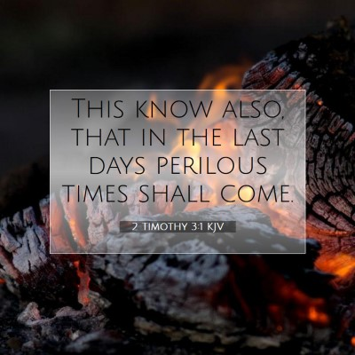 Picture 07 - 2 Timothy 3:1 KJV - This know also, that in the last days perilous - Bible Verse Picture