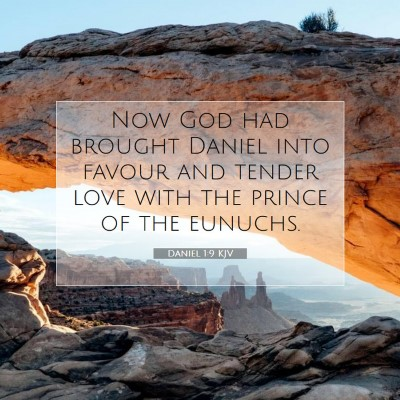 Picture 07 - Daniel 1:9 KJV - Now God had brought Daniel into favour and tender - Bible Verse Picture