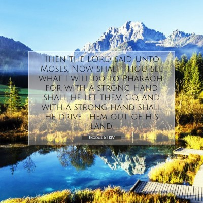 Picture 07 - Exodus 6:1 KJV - Then the LORD said unto Moses, Now shalt thou see - Bible Verse Picture