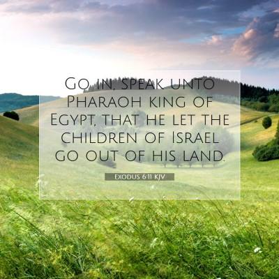 Picture 07 - Exodus 6:11 KJV - Go in, speak unto Pharaoh king of Egypt, that he - Bible Verse Picture