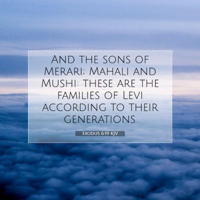 Picture 07 - Exodus 6:19 KJV - And the sons of Merari; Mahali and Mushi: these - Bible Verse Picture
