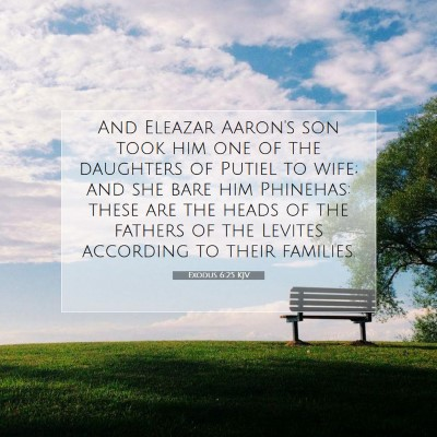 Picture 07 - Exodus 6:25 KJV - And Eleazar Aaron's son took him one of the - Bible Verse Picture