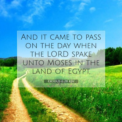 Picture 07 - Exodus 6:28 KJV - And it came to pass on the day when the LORD - Bible Verse Picture