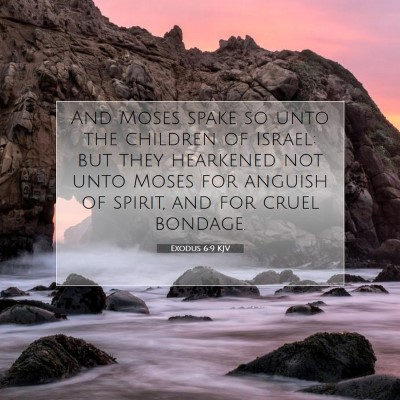 Picture 07 - Exodus 6:9 KJV - And Moses spake so unto the children of Israel: - Bible Verse Picture
