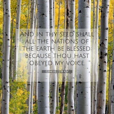 Picture 07 - Genesis 22:18 KJV - And in thy seed shall all the nations of the - Bible Verse Picture