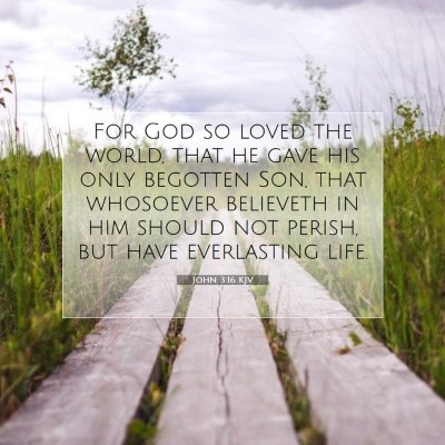 Picture 07 - John 3:16 KJV - For God so loved the world, that he gave his only - Bible Verse Picture
