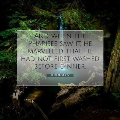 Picture 07 - Luke 11:38 KJV - And when the Pharisee saw it, he marvelled that - Bible Verse Picture
