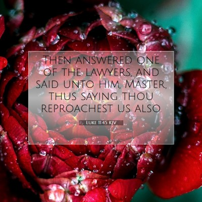 Picture 07 - Luke 11:45 KJV - Then answered one of the lawyers, and said unto - Bible Verse Picture