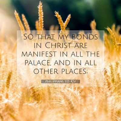 Picture 07 - Philippians 1:13 KJV - So that my bonds in Christ are manifest in all - Bible Verse Picture