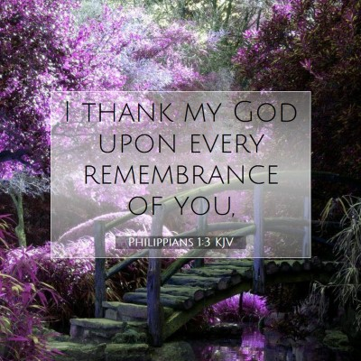 Picture 07 - Philippians 1:3 KJV - I thank my God upon every remembrance of - Bible Verse Picture