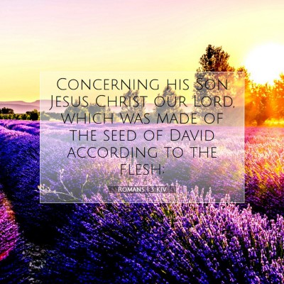 Picture 07 - Romans 1:3 KJV - Concerning his Son Jesus Christ our Lord, which - Bible Verse Picture