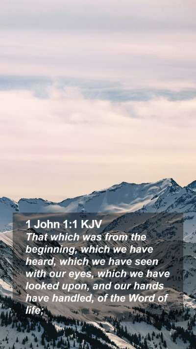 1 John 1:1 KJV Mobile Phone Wallpaper - That which was from the beginning, which we have - Mobile Bible Verse Wallpaper