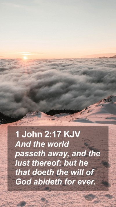 1 John 2:17 KJV Mobile Phone Wallpaper - And the world passeth away, and the lust thereof: - Mobile Bible Verse Wallpaper