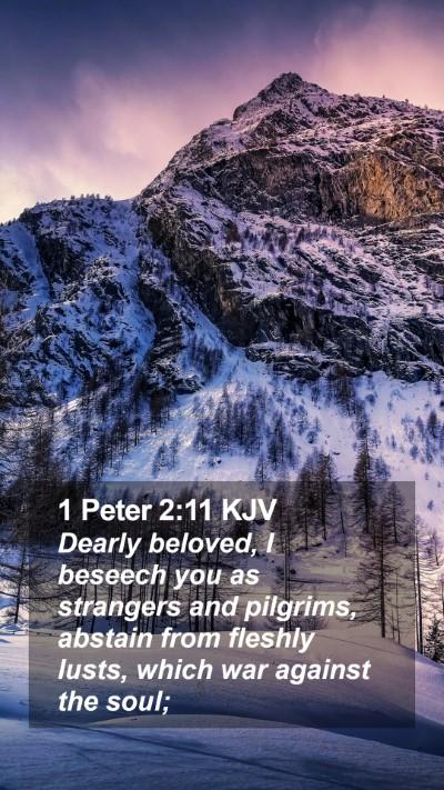 1 Peter 2:11 KJV Mobile Phone Wallpaper - Dearly beloved, I beseech you as strangers and - Mobile Bible Verse Wallpaper