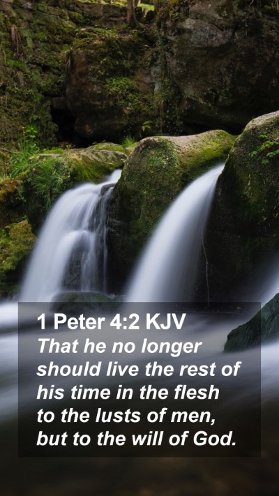 1 Peter 4:2 KJV Mobile Phone Wallpaper - That he no longer should live the rest of his - Mobile Bible Verse Wallpaper