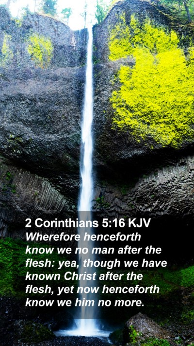 2 Corinthians 5:16 KJV Mobile Phone Wallpaper - Wherefore henceforth know we no man after the - Mobile Bible Verse Wallpaper