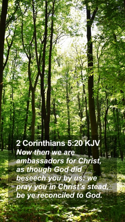 2 Corinthians 5:20 KJV Mobile Phone Wallpaper - Now then we are ambassadors for Christ, as though - Mobile Bible Verse Wallpaper