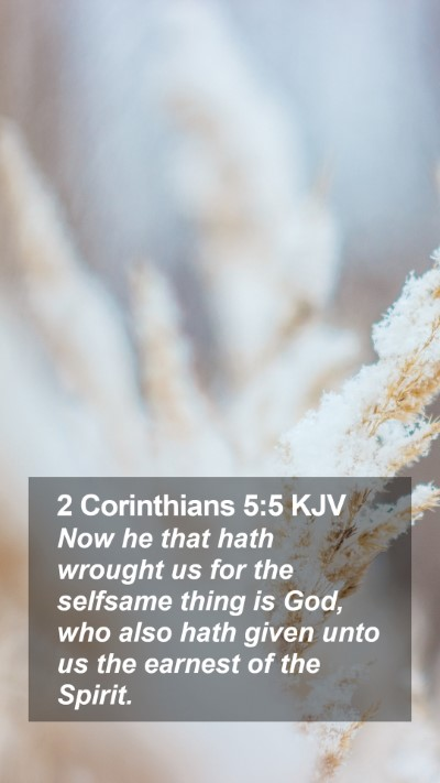 2 Corinthians 5:5 KJV Mobile Phone Wallpaper - Now he that hath wrought us for the selfsame - Mobile Bible Verse Wallpaper