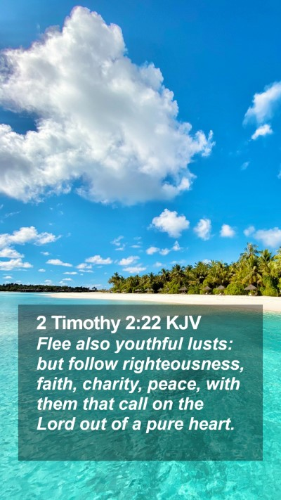 2 Timothy 2:22 KJV Mobile Phone Wallpaper - Flee also youthful lusts: but follow - Mobile Bible Verse Wallpaper
