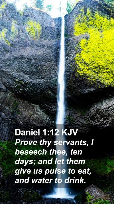Daniel 1:12 KJV Mobile Phone Wallpaper - Prove thy servants, I beseech thee, ten days; and - Mobile Bible Verse Wallpaper