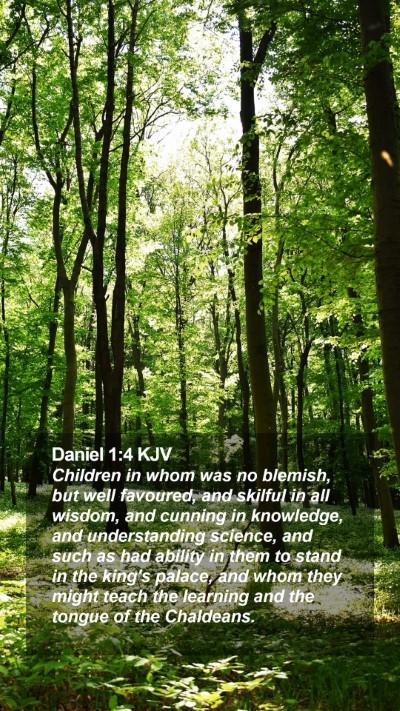 Daniel 1:4 KJV Mobile Phone Wallpaper - Children in whom was no blemish, but well - Mobile Bible Verse Wallpaper